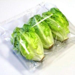 Mini Romana Salat in Flowpack